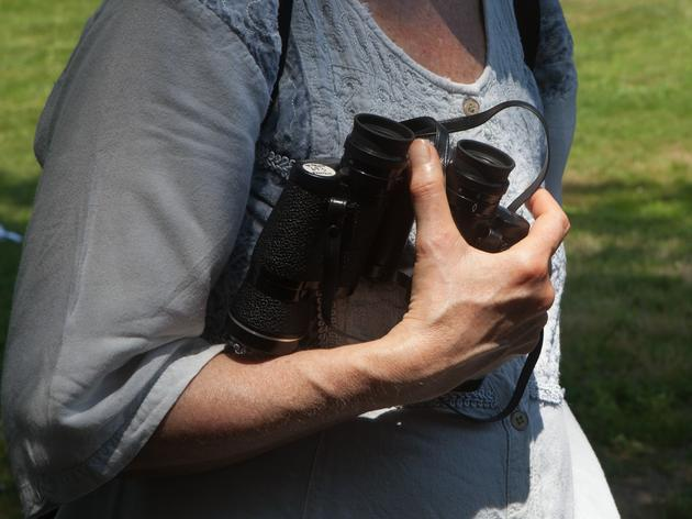Let's Go Birding Together: An All-Inclusive Bird Walk Coming to Omaha