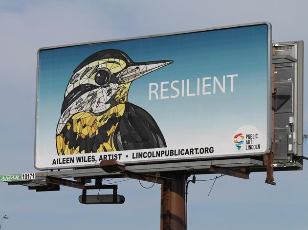 Bigger Than Life Birds: Behind the Bird Billboards